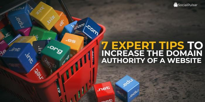 7 Expert Tips To Increase The Domain Authority Of A Website